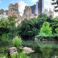 7/15/2013 tarihinde Courtney E.ziyaretçi tarafından Central Park'de çekilen fotoğraf