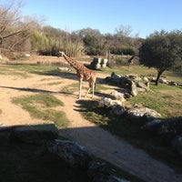 3/2/2013에 Leah V.님이 Cameron Park Zoo에서 찍은 사진