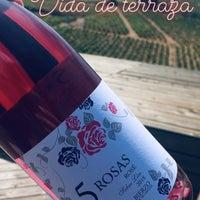 Losada Vinos De Finca Vineyard