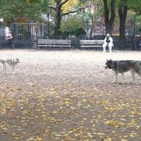 10/24/2012 tarihinde Bonnie C.ziyaretçi tarafından Tompkins Square Park Dog Run'de çekilen fotoğraf