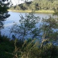 4/26/2013 tarihinde Gamze Ç.ziyaretçi tarafından Aydos Ormanı Göl Kenarı'de çekilen fotoğraf