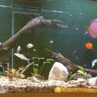 Foto tirada no(a) Kurokawa Sushi Bar por Vivian Helena M. em 12/23/2012