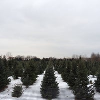 ... Photo taken at Candy Cane Christmas Tree Farm by Joe J. on 12/13 ...