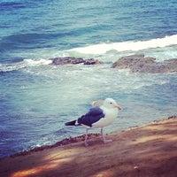 Снимок сделан в La Jolla Beach пользователем Kate K. 7/17/2013