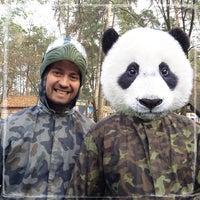 11/3/2013にВасилий К.がПейнтбол «Гепард»で撮った写真