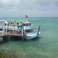 Das Foto wurde bei Sandy Toes, Rose Island von Séverine G. am 5/17/2016 aufgenommen