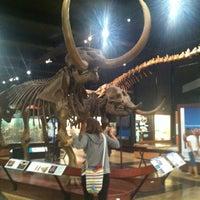 Das Foto wurde bei University of Michigan Museum of Natural History von Javier L. am 7/27/2013 aufgenommen