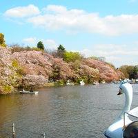 4/4/2013にHarumi K.が井の頭恩賜公園で撮った写真