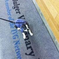 รูปภาพถ่ายที่ Bulger Veterinary Hospital โดย Lisa J. เมื่อ 12/17/2012
