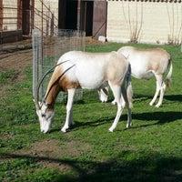 Foto tomada en ZOO KOKI (Parque zoológico y botánico) por Iñaki H. el 12/28/2012