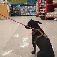 Petco - Pet Store in Escondido