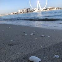 3/5/2021にAyse G.がThe Beachで撮った写真