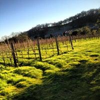 Photo prise au Imagery Estate Winery par Evan M. le2/10/2013