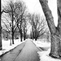 2/24/2013にTom H.がTrinity Bellwoods Parkで撮った写真