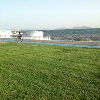 5/23/2013 tarihinde Cihan T.ziyaretçi tarafından Dalyan Sahil'de çekilen fotoğraf