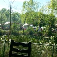 Das Foto wurde bei Polonezköy Hayvanat Bahçesi ve Doğal Yaşam Parkı von Fahri C. am 4/28/2013 aufgenommen
