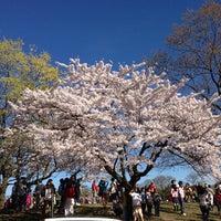 Снимок сделан в High Park пользователем Monim M. 5/6/2013