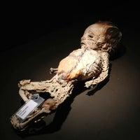 Foto tomada en Museo de las Momias de Guanajuato por Daniel R. el 7/6/2013