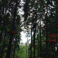 Снимок сделан в Веревочный парк «Tree To Tree» пользователем Нина Г. 5/31/2014
