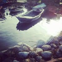 3/9/2013 tarihinde S. S.ziyaretçi tarafından Sapanca Sahili'de çekilen fotoğraf