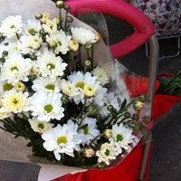 11/15/2014에 Pamela P.님이 Feria Matta Oriente에서 찍은 사진