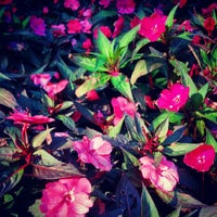 Das Foto wurde bei Sunken Gardens von Jacob K. am 2/18/2013 aufgenommen