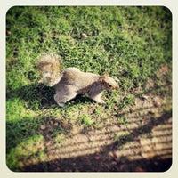 2/7/2013에 Claudio V.님이 St James's Park에서 찍은 사진