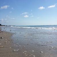 ... Photo Taken At Ocean Ridge Hammock Park By Jason R. On 6/14/ ...