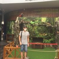10/22/2020 tarihinde Андрей С.ziyaretçi tarafından Wildpark Antalya'de çekilen fotoğraf
