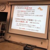 相談 動物 センター 都 愛護 東京