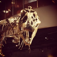 Foto tirada no(a) Perot Museum of Nature and Science por Michael S. em 11/30/2012