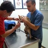 7/18/2013 tarihinde Mustafa D.ziyaretçi tarafından Pet Clinic'de çekilen fotoğraf