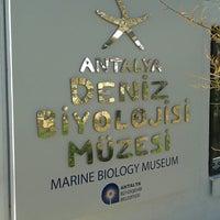 1/18/2014 tarihinde Furkan K.ziyaretçi tarafından Deniz Biyolojisi Müzesi'de çekilen fotoğraf