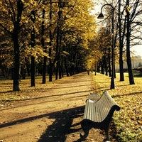 Снимок сделан в Московский парк Победы пользователем Olga T. 10/12/2013