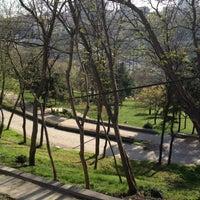 Foto scattata a Maçka Demokrasi Parkı da Ayten Ş. il 4/12/2013