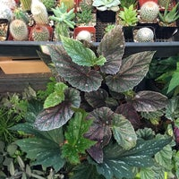 7/2/2016 tarihinde Stefanie H.ziyaretçi tarafından New Seasons Market'de çekilen fotoğraf
