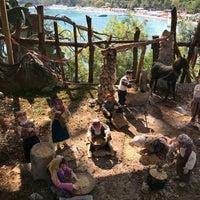 7/18/2019にİlker A.がYörük Parkıで撮った写真