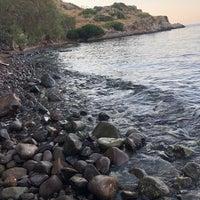 Foto tirada no(a) Dodo Beach Club por Melek K. em 8/13/2019