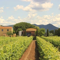 Foto scattata a Terre Del Marchesato - Bolgheri da Terre Del Marchesato - Bolgheri il 7/5/2013