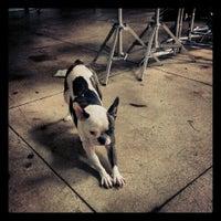 3/6/2013にSylvana C.がAntfarm Photographyで撮った写真