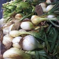 Foto scattata a Hillcrest Farmers Market da CRISSY il 6/30/2013