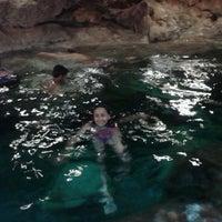 รูปภาพถ่ายที่ Cenote San Ignacio โดย JOy L. เมื่อ 3/29/2013