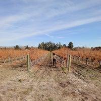 12/31/2020にAMWがLincourt Vineyardsで撮った写真