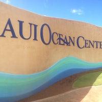 Photo prise au Maui Ocean Center, The Hawaiian Aquarium par MrEric P. le5/26/2013