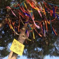 8/3/2016 tarihinde BABACAN BİSTRO L.ziyaretçi tarafından Gazoz Ağacı Sahnesi Babacan Bistro Life'de çekilen fotoğraf