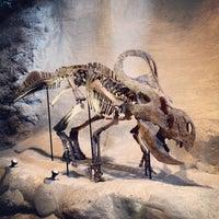 Foto diambil di Carnegie Museum of Natural History oleh Julian P. pada 8/20/2012