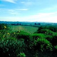 Photo prise au Gloria Ferrer Caves & Vineyards par noah a. le2/26/2012