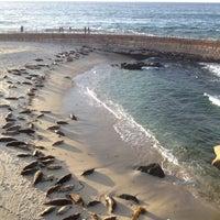 Foto tirada no(a) La Jolla Tide Pools por Rocky R. em 3/1/2012
