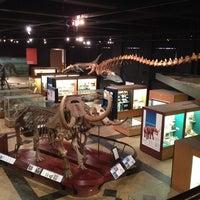 Das Foto wurde bei University of Michigan Museum of Natural History von Diana R. am 2/25/2014 aufgenommen