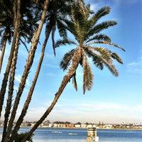 3/27/2013 tarihinde Daniel F.ziyaretçi tarafından Mission Bay Aquatic Center'de çekilen fotoğraf